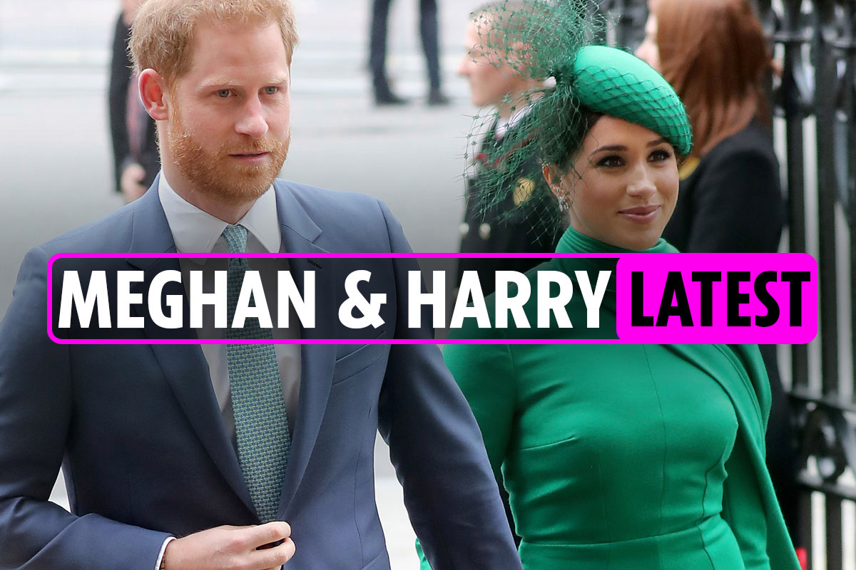 Meghan Markle and Prince Harry news: Duchess 'to relaunch lifestyle blog The Tig' predicts royal expert – latest updates