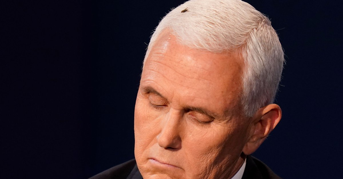 Here's the Buzz on the Fly in Mike Pence's Hair at the Vice Presidential Debate