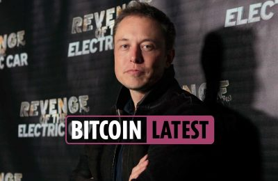 Bitcoin value information newest – StopElon coin launched to stop Elon Musk from influencing the cryptocurrency market